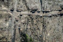 Satellietbeeld van vreselijke ontbossing, registreren, milieuvernietiging stock foto