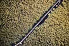 Satellietbeeldmoeras Viareggio stock afbeeldingen