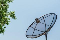 Satellit- maträtt med trädet och himmel Royaltyfri Fotografi