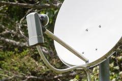 Satellit- maträtt - TV Arkivfoto