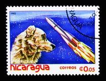 Satellit och hund, rymdflygningserie, circa 1982 Royaltyfria Bilder