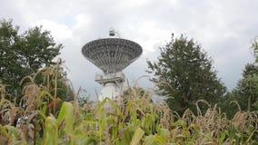 Satellit- samling på mitten av utrymmekommunikationen till och med cornfield stock video