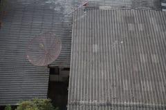 Satellit- tak arkivbild