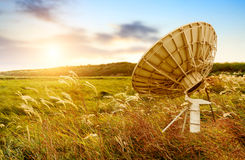Satellite Antenna. In the wilderness, sunset in grassland and reeds Stock Photo