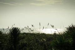 Satellite Beach in Florida Stock Photo