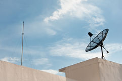 Satellite Dish Antenna and lighting rod. Satellite dish on top of the building with clear sky in the background with lighting rod Stock Image