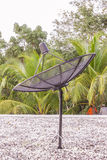 Satellite dish on roof top. With white pebble Royalty Free Stock Images