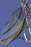 Satellite dish on a telecommunications tower Royalty Free Stock Photo