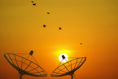 Satellite dishes. Royalty Free Stock Photography