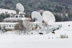 Satellite e cavalli Fotografia Stock Libera da Diritti