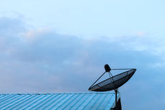 Satellite. Photos Can be assembled in different tasks Royalty Free Stock Image