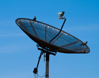 Satellite. Pic of Satellite with Pigeon Royalty Free Stock Images