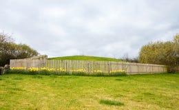Satellite untouched tomb at Newgrange Royalty Free Stock Photos