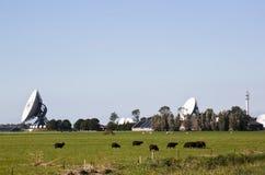 Satelliti di comunicazione, Burum, Paesi Bassi Fotografia Stock Libera da Diritti