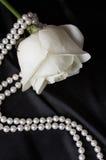 Satin et rose noirs lisses de blanc, Photographie stock libre de droits