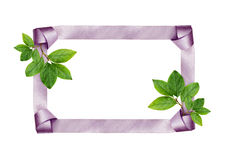 Satin frame and green leaves Royalty Free Stock Images