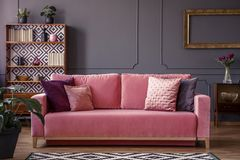 Satin pillows on a pink velvet sofa in a luxurious living room i. Nterior with molding on dark gray walls and retro design royalty free stock photography