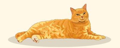 Satisfecho con el gato rojo rayado estiró su altura completa Postura imponente Gato que miente y que descansa Animales domésticos stock de ilustración