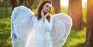 Satisfied angel heated by the sun beams Stock Photos