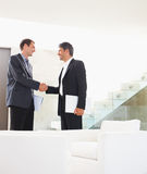 Satisfied business man shaking hands after a deal Royalty Free Stock Photo
