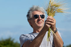 Satisfied farmer. Smiling farmer holding barley in his hands Royalty Free Stock Photo