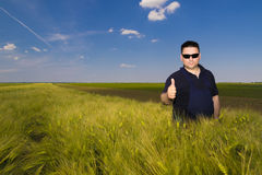 Satisfied farmer in the field Stock Image
