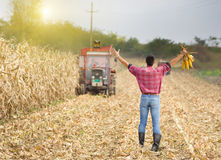 Satisfied farmer Stock Photo