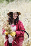 Satisfied farmer looking at the crop with a bunch of ripe wheat Stock Photo