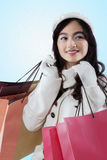 Satisfied girl smiling with shopping bags Royalty Free Stock Image