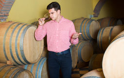 Satisfied man posing in winery cellar Royalty Free Stock Photography