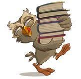 Satisfied owl carries books Stock Image