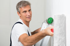 Satisfied Painter Painting Wall Royalty Free Stock Photography