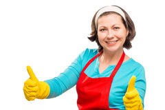 Satisfied young housewife posing Royalty Free Stock Photography