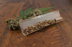 Sativa holandeses del cáñamo grinded con el tabaco en papel, alistan para rodar una junta de la mala hierba imagen de archivo