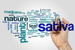 Sativa word cloud Stock Photos