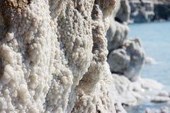 Satly stones at the coast of dead sea Royalty Free Stock Photos