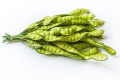 Sato Vegetable på vit bakgrund Fotografering för Bildbyråer