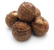 Satoimo, small japanese taro potatoes Stock Image