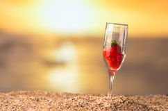 Satrwberry solnedgång Arkivfoton