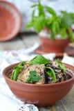Satsivi - aubergine i jordnötsås Traditionell georgian cuisin Royaltyfria Bilder