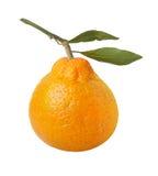 Satsuma πορτοκάλι που απομονώνεται με το ψαλίδισμα του μονοπατιού στοκ φωτογραφίες με δικαίωμα ελεύθερης χρήσης