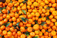 Satsuma mandarin in bulk on the market Royalty Free Stock Images