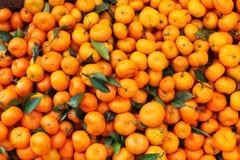 Satsuma mandarin in bulk on the market Royalty Free Stock Images