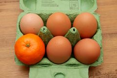 Satsuma, or small orange, in an egg carton, alone with five eggs. Odd one out concept Royalty Free Stock Images