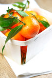Satsuma on table cloth Royalty Free Stock Images