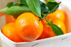 Satsuma on wooden box. Mandarin Oranges (Clementines) in wooden box Royalty Free Stock Images
