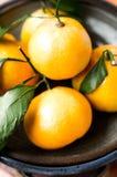 Satsuma tangerine fruit Stock Photo