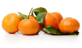 Satsumas on a white background Stock Images