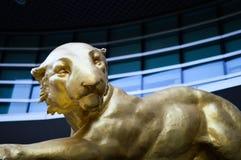Satt lejon Arkivfoto