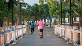 A mature man on pink shirt is running on the bridge in park in evening time royalty free stock photo